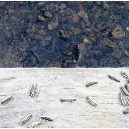 vangvieng river lagoon phonegraphy