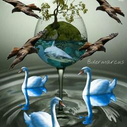 wapcutout surreal fantasy phantasy birds