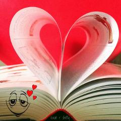 lovesick amore valentinesday valentine book