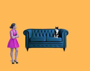 freetoedit cats woman