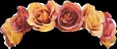 freetoedit flower crown flowercrown